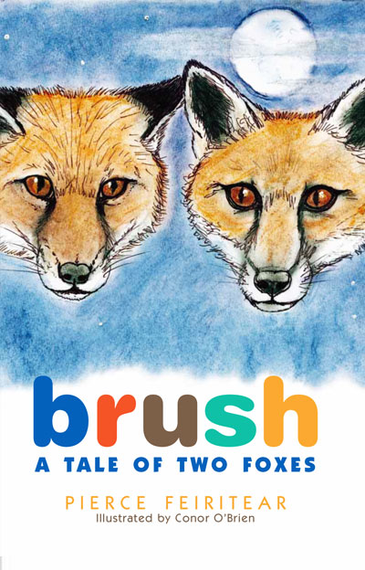 brush-a-tale-of-two-foxes-irish-books-cover